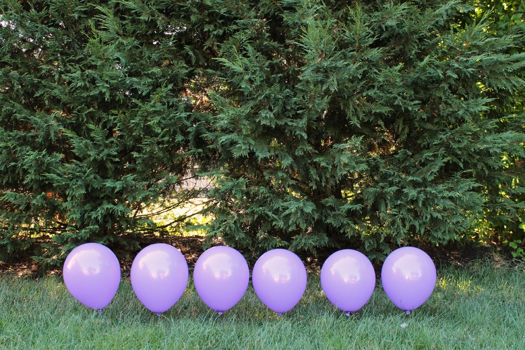 DIY Balloon Backdrop - Row One