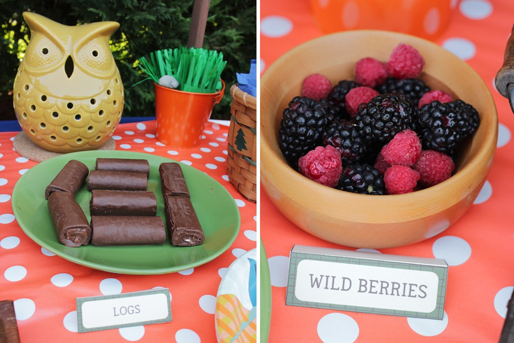 Let's Go Camping Party Food Table Details