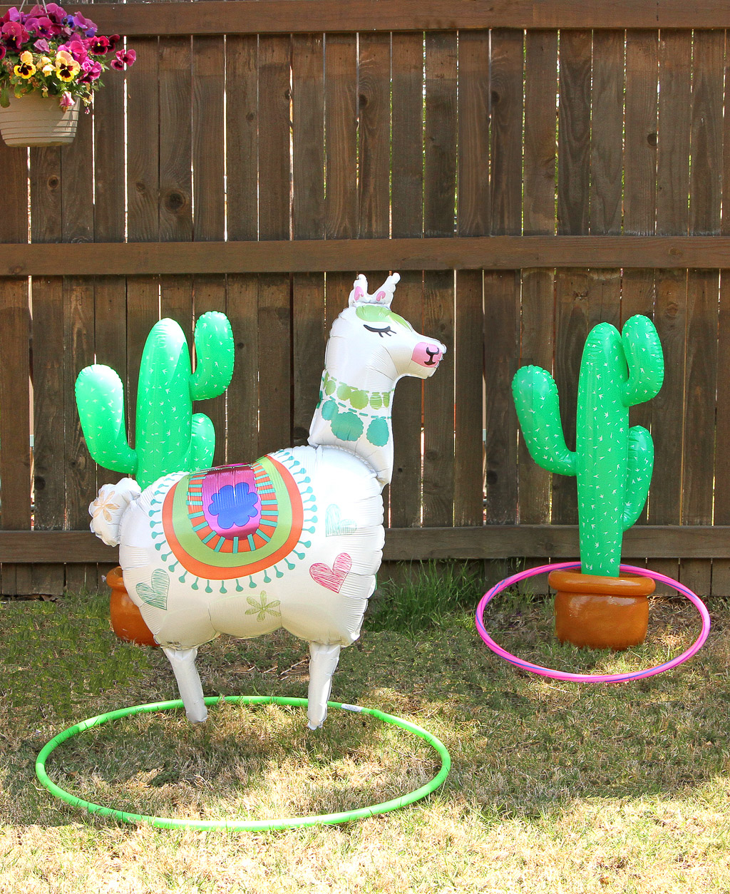 Llama Themed Birthday Party