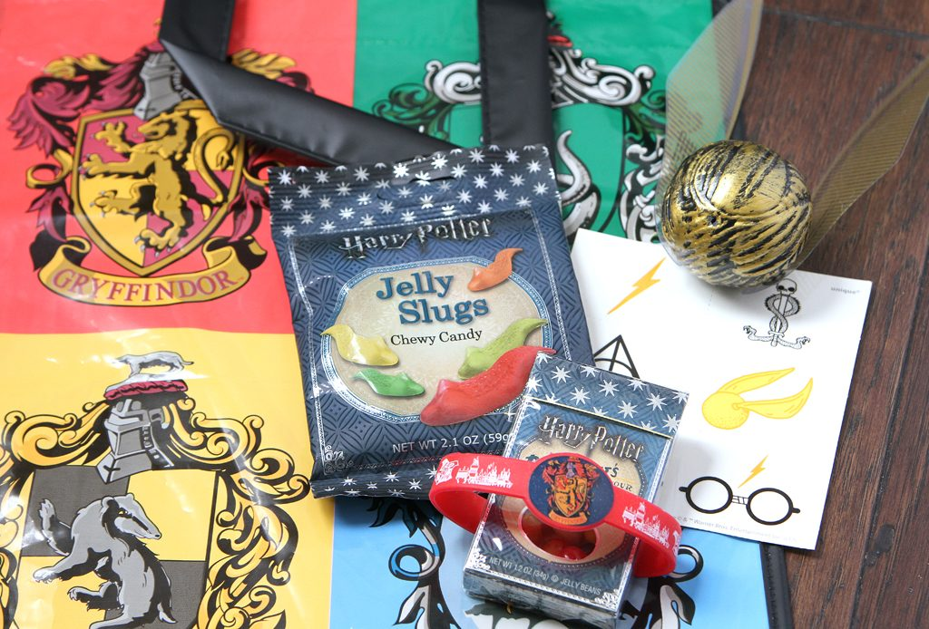 Harry Potter Party Favors